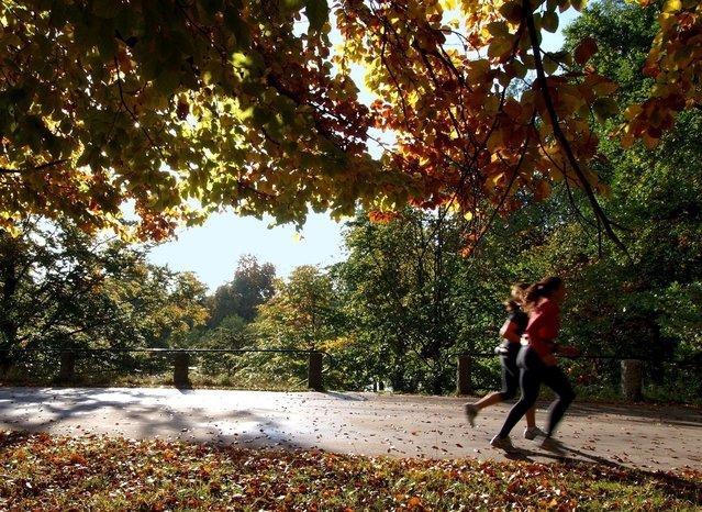 Bežkyne v parku, fit, pohyb, zdravie.jpg